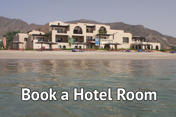 Book a Hotel Room