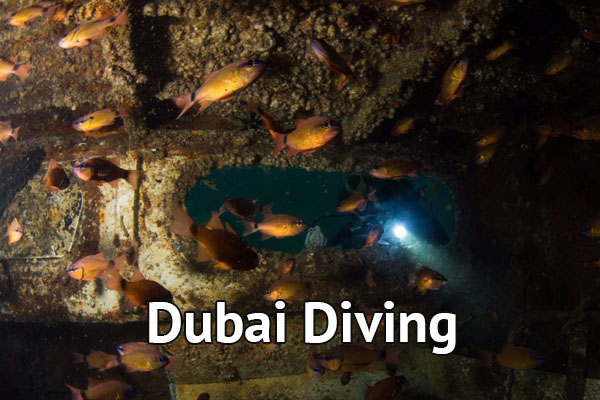 Dubai Wreck Diving